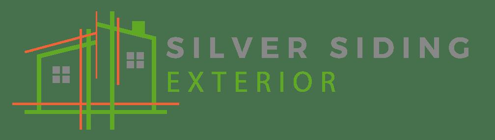 Silver Siding Exterior